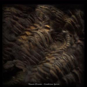 Cambrian Spirits